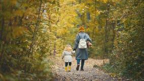 La petite fille joyeuse avec sa maman et nounours l'ours marche en parc d'automne, vue arrière Image stock