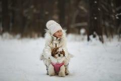 La petite fille marche avec son tzu aimé de shih de chiot Photos stock