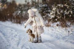 La petite fille marche avec son tzu aimé de shih de chiot Photographie stock libre de droits