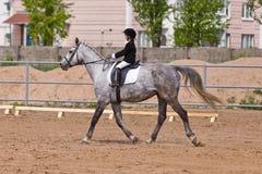 La petite fille montant un cheval participe aux concours Campagne d'été Image libre de droits