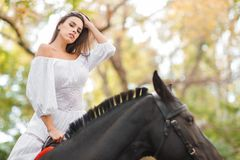 la petite fille monte un cheval Belle jeune femme dans une équitation blanche de robe sur un cheval brun dehors Image libre de droits