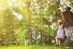 La petite fille prend des photos sous un grand arbre de floraison Photos stock