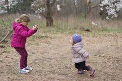 La petite fille prend une photo de sa bébé-soeur en parc de fleurs de cerisier au printemps image stock