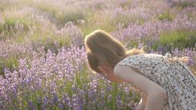 la petite fille rassemble des fleurs banque de vidéos