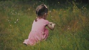 La petite fille rassemble des fleurs dans la forêt banque de vidéos