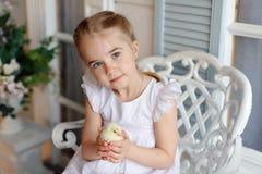 La petite fille rousse avec des tresses tenant un chicke jaune Image stock