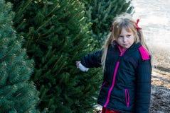 La petite fille sélectionne l'arbre de Noël Photo stock