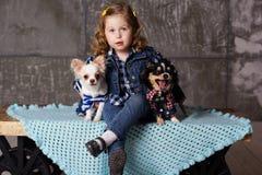 La petite fille s'assied avec deux chiens de chuhuahua Photos libres de droits