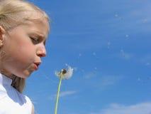 La petite fille souffle sur le pissenlit photos stock