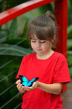 La petite fille tient Ulysses Swallowtail photos libres de droits
