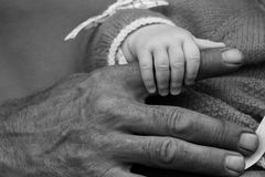 La petite main blanche de l'enfant tient le doigt des mains foncées d'hommes du père Photos stock