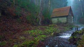 La petite maison se tient sur les banques d'une rivière de montagne banque de vidéos