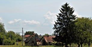 La petite maison, vert de ciel bleu s'embranche et les nuages blancs Image stock