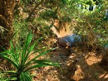 La petite plage tropicale dans l'endroit silencieux Photographie stock libre de droits