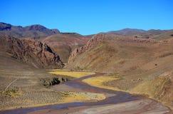 La petite rivière de montagne en Bolivie Photographie stock