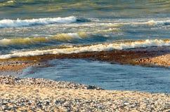 La petite rivière entre dans la mer Image stock