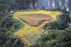 La petite rizière cachée à l'intérieur de la montagne de Zhangjiajie dans la province de Hunan en Chine photo stock