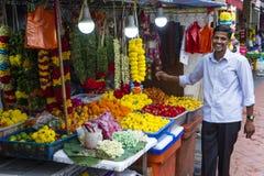 La peu d'Inde, Singapour Image stock