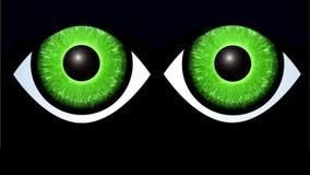 La página de Internet animada del error 404, pagina no encontrado Ojos de gato verdes que brillan intensamente que buscan sitio w almacen de video