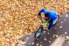 La photo aérienne d'un garçon monte une bicyclette en parc d'automne Photos libres de droits