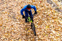 La photo aérienne d'un garçon monte une bicyclette en parc d'automne Image stock