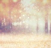 La photo abstraite brouillée de la lumière a éclaté parmi des arbres Photographie stock libre de droits