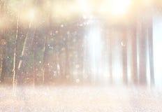La photo abstraite brouillée de la lumière a éclaté parmi des arbres Photos libres de droits