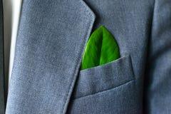 La photo de l'homme d'affaires dans un costume avec une feuille dans une poche Photo libre de droits
