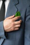 La photo de l'homme d'affaires dans un costume avec une feuille dans une poche Image stock