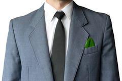 La photo de l'homme d'affaires dans un costume avec une feuille dans une poche Photographie stock libre de droits