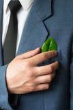 La photo de l'homme d'affaires dans un costume avec une feuille dans une poche Photos libres de droits