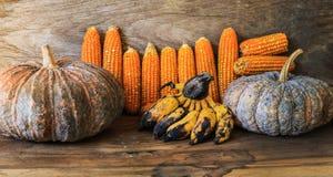 La photo de maïs, maïs de la Thaïlande Photo libre de droits