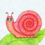La photo dessinée par mains de l'escargot sur la feuille verte par la couleur crayonne illustration libre de droits