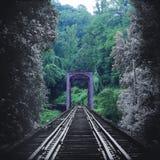La photographie artistique de nature d'un train de vintage dépiste le pont se fanant en couleurs dans la forêt images libres de droits