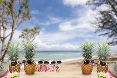 la piña con las gafas de sol y el sombrero varan, los zapatos en la madera, concepto su Fotografía de archivo libre de regalías