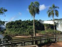 La più grande cascata nel mondo - lato delle cascate di Iguazu Argentina fotografie stock