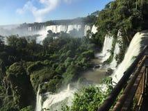 La più grande cascata nel mondo - lato delle cascate di Iguazu Argentina immagine stock libera da diritti