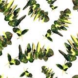 La pianta dell'eucalyptus lascia il modello senza cuciture Fotografia Stock Libera da Diritti
