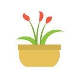 La pianta dell'interno del fiore Fotografie Stock Libere da Diritti