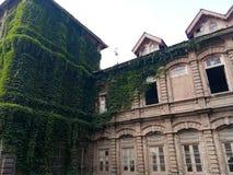 La pianta ha riguardato l'istituzione - valle del Costruzione-Kashmir di eredità Fotografia Stock Libera da Diritti