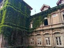 La pianta ha riguardato l'istituzione - valle del Costruzione-Kashmir di eredità Fotografia Stock