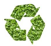 La pianta ricicla il simbolo Immagine Stock