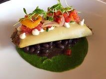 La pianta sana ha basato il piatto messicano del burrito di stile Fotografia Stock Libera da Diritti