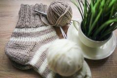 La pianta verde nel filato beige e bianco del vaso, Knitted ha barrato il calzino beige-beige è sulla tavola fotografia stock