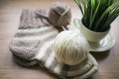 La pianta verde nel filato beige e bianco del vaso, Knitted ha barrato il calzino beige-beige è sulla tavola fotografia stock libera da diritti