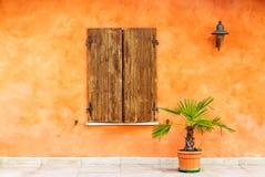 La pianta verde in un vaso vicino alla finestra di vecchia arancia ha dipinto la casa con gli otturatori di legno marroni Immagin immagini stock libere da diritti