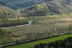 la piantagione, pesche, azienda agricola, l'agricoltura, ha coltivato i campi Immagine Stock Libera da Diritti