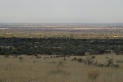 La pianura dell'Africano Immagine Stock