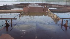 La piattaforma arrugginita del metallo si è sommersa in acqua sull'impresa di piscicoltura Mattina nebbiosa sul lago archivi video