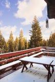 La piattaforma in neve Fotografia Stock